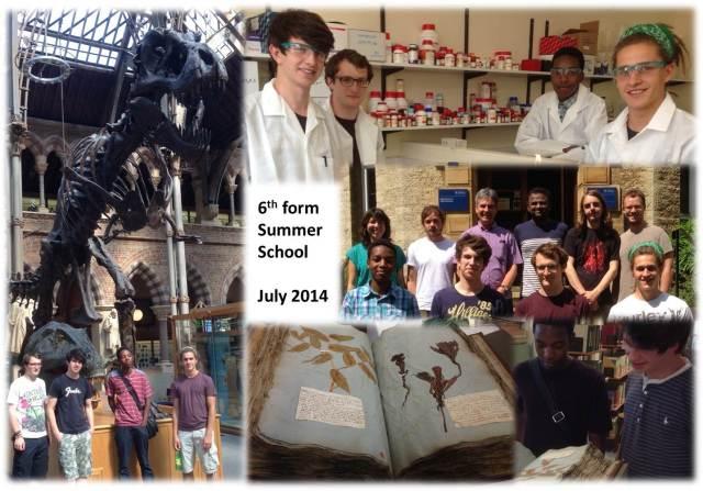 Sixthform summer school2014